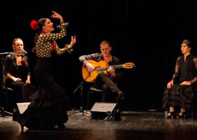 noche-flamenca-3